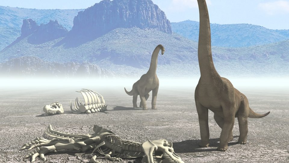 Empresas dinosaurio