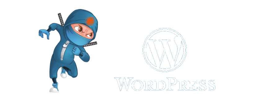Somos especialistas en WordPress