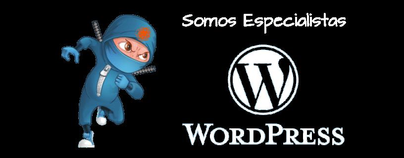 Somos especialistas en WordPress